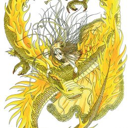 komori dragon jaune noxice